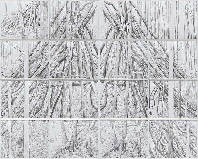 Forest 2, Bleistift auf Papier, 160 x 200 cm
