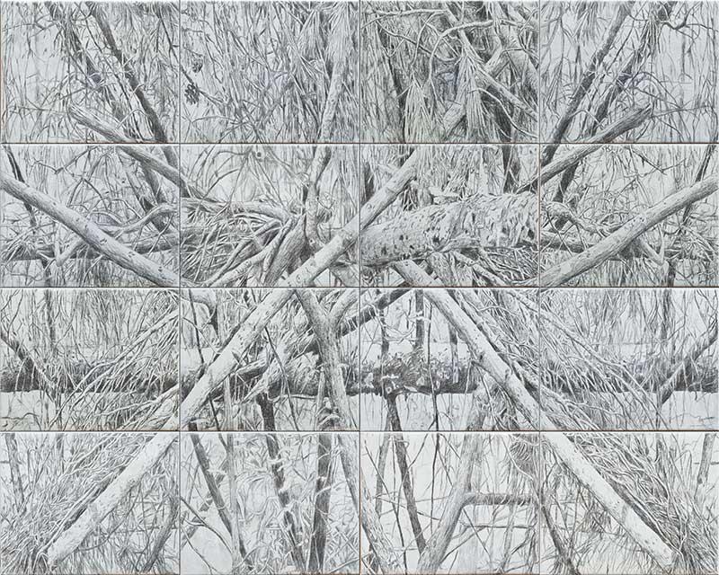 Forest 3, Bleistift auf Leinwand, 160 x 200 cm