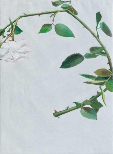 Rose 2017, Öl auf Leinwand, 150 x 110 cm