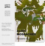 Alois Mosbacher Bessere Sicht, galerie gölles, Fürstenfeld